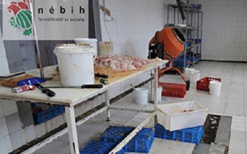 Des abattoirs illégaux ont aussi été démantelés. 57 pays ont été épinglés. (Photos Europol)