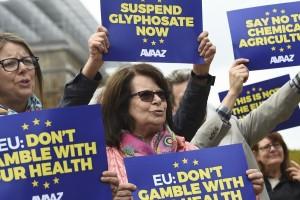 Malgré les protestations des militants anti-glyphosate, la Commission européenne a prolongé son autorisation pour 18 mois maximum. (Photo AFP)