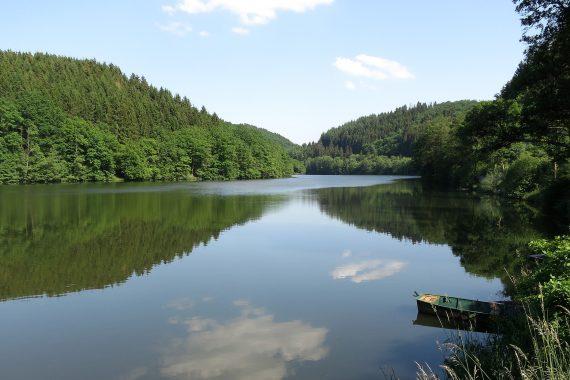 La baignade reste déconseillée dans le lac : les analyses ont révélé la présence d'algues productrices de toxines potentiellement nuisibles pour la santé. (photo DR)