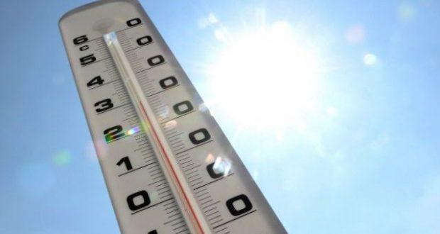 En juillet la température moyenne globale au-dessus des terres et à la surface des océans a été de 16,67 degrés Celsius, soit 0,87°C au-dessus de la moyenne du XXe siècle. Le record de juillet 2015 a été battu de 0,06°C. (Illustration : DR)