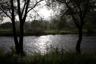 Si elle s'améliore, la qualité des eaux luxembourgeoises est encore loin d'être parfaite. (photo Didier Sylvestre)